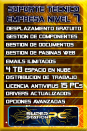 Soporte Tecnico Informatico Nivel 7