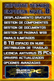 Soporte Tecnico Informatico Nivel 8