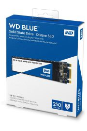 SSD WD Blue M.2 250GB 01