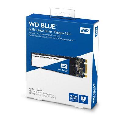 SSD WD Blue M.2 250GB 01