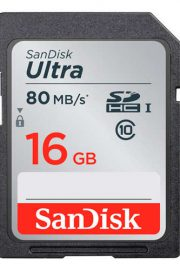Sandisk SDSDUNC-016G-GN6IN 16GB SDHC UHS-I Class 10